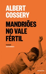 Mandriões no vale fértil, Albert Cossery, Antígona