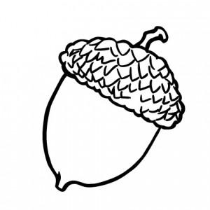 Bolota, Yoko Ono, Pergaminho