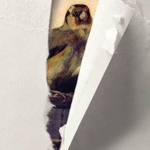 O Pintassilgo, Donna Tartt, Editorial Presença,