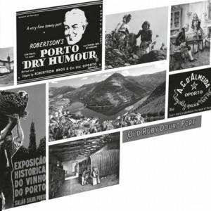 Porto Editora, Dicionário Ilustrado do Vinho do Porto, Manuel Pintão, Carlos Cabral