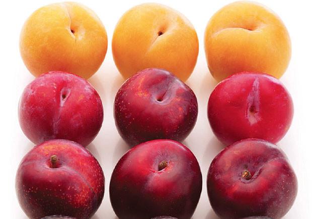 Os super alimentos que podem mudar a sua vida, Casa das Letras, Cristine Bailey