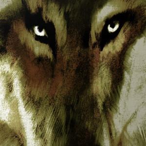 Ricardo J. Rodrigues, Malditos - histórias de homens e de lobos, Fundação Francisco Manuel dos Santos