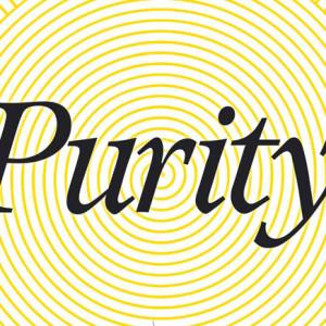 Purity, Dom Quixote, Jonathan Franzen