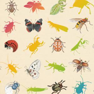 Inventário iluustrado dos insetos