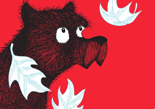 O Urso Que Não Era, bruáa, Deus Me Livro, Frank Tashlin