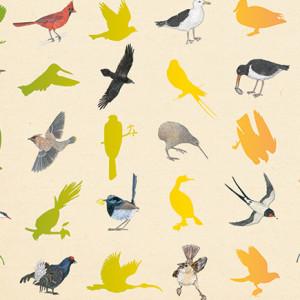 Inventário Ilustrado das Aves, Kalandraka, Deus Me Livro, Virginie Aladjidi, Emmanuelle Tchoukriel