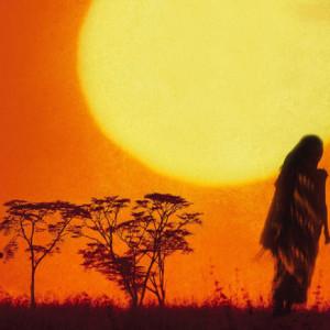 Meio Sol Amarelo, D. Quixote, Deus Me Livro, Chimamanda Ngozi Adiche